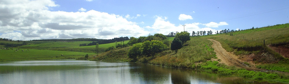 dam-banner